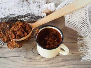 champignon-chaga-cgood