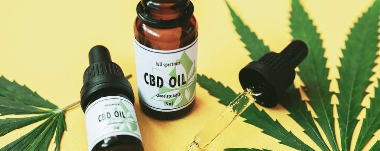meilleure-huile-cannabis-riche-cbd