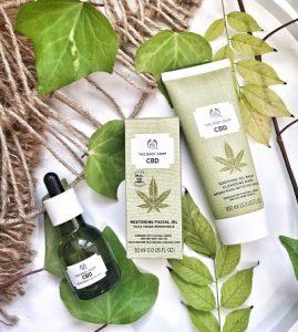 prix-huile-cannabis-riche-cbd